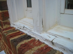Stop the Rot: The Easy Guide to Preventing Dry Rot in Your Home